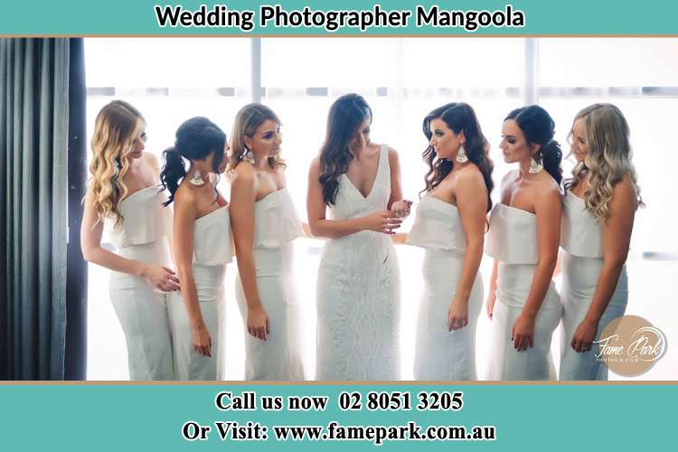 Photo of the Bride and the bridesmaids Mangoola NSW 2333