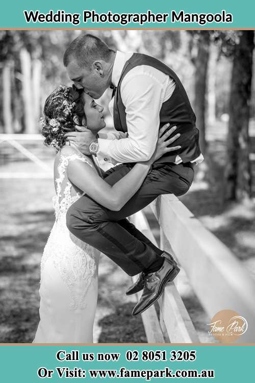 Photo of the Groom sitting on the fence while kissing the Bride on the forehead Mangoola NSW 2333