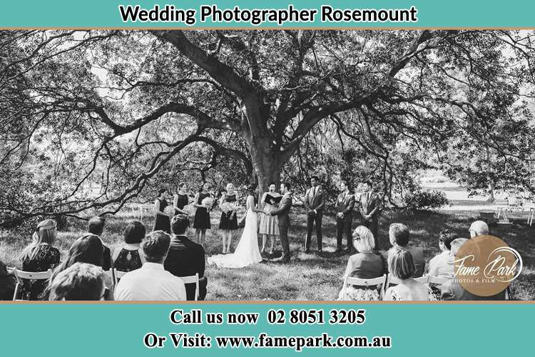 Wedding ceremony under the big tree photo Rosemount NSW 2328